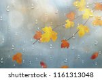 autumn leaves for the rainy... | Shutterstock .eps vector #1161313048