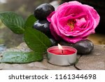 rose pink flower with stones... | Shutterstock . vector #1161344698