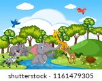 wild animals living near river... | Shutterstock .eps vector #1161479305