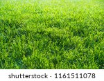 urban photography  a lawn is an ... | Shutterstock . vector #1161511078
