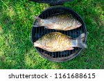 fish grilled over the charcoals ... | Shutterstock . vector #1161688615