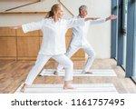 full length view of elderly... | Shutterstock . vector #1161757495