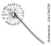 wildflower dandelion in a style ...   Shutterstock . vector #1161766228