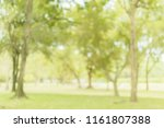 blurred of  green trees  lawn... | Shutterstock . vector #1161807388
