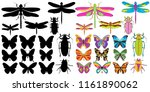 isolated  bright insects ... | Shutterstock .eps vector #1161890062