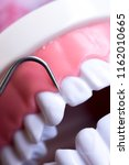 dentist cleaning teeth with...   Shutterstock . vector #1162010665
