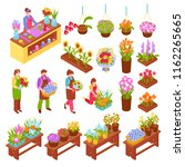 florist isometric set of... | Shutterstock .eps vector #1162265665