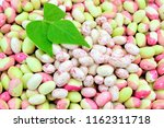 different types of beans and...   Shutterstock . vector #1162311718