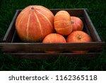 Few Mini Pumpkins At Outdoor...
