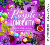 purple diet for longevity ... | Shutterstock .eps vector #1162369732