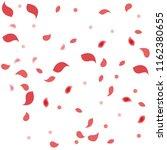 abstract flower petals confetti ... | Shutterstock .eps vector #1162380655