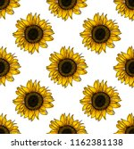 botanical floral seamless... | Shutterstock .eps vector #1162381138