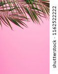 flat lay with green palm leaves ... | Shutterstock . vector #1162522222