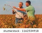two farmers standing in a field ... | Shutterstock . vector #1162534918