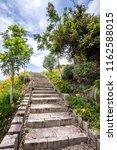 the orange daylily tawny... | Shutterstock . vector #1162588015