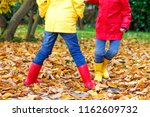 Small photo of Two little children playing in red and yellow rubber boots in autumn park in colorful rain coats and clothes. Closeup of kids legs in shoes dancing and walking through fall autumnal leaves and foliage
