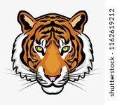 tiger head illustration vector | Shutterstock .eps vector #1162619212