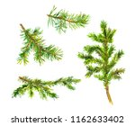 set of christmas tree branches. ... | Shutterstock . vector #1162633402