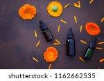 marigold or calendula essential ... | Shutterstock . vector #1162662535