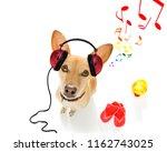 cool dj  chihuahua podenco dog... | Shutterstock . vector #1162743025