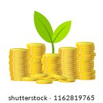 green plant and gold money... | Shutterstock . vector #1162819765