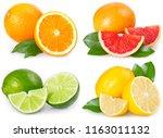 Fresh Orange  Grapefruit  Lemon ...