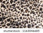 leopard fur texture background.   Shutterstock . vector #1163046685