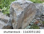 grey crushed stones in close up ... | Shutterstock . vector #1163051182