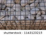 close up outdoor view of a... | Shutterstock . vector #1163123215
