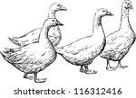 Gooses