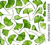 ginkgo biloba leaves floral... | Shutterstock . vector #1163144008