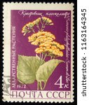 ussr   circa 1972  postage... | Shutterstock . vector #1163164345