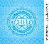 bachelor sky blue water emblem... | Shutterstock .eps vector #1163209975