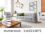 real photo of grey sofa with... | Shutterstock . vector #1163213872
