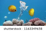 beautiful coral reef with... | Shutterstock . vector #1163349658
