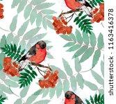 bullfinch on a rowan twig... | Shutterstock . vector #1163416378