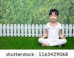 asian chinese little girl... | Shutterstock . vector #1163429068