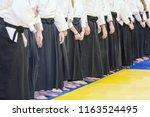 people in kimono and hakama on...   Shutterstock . vector #1163524495