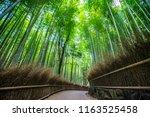 arashiyama bamboo grove forest... | Shutterstock . vector #1163525458