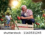 family working together in... | Shutterstock . vector #1163531245