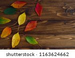 autumn leaves transition from... | Shutterstock . vector #1163624662