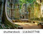 Ta Prohm Temple In The Morning...