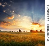 Stock photo landscape sunny dawn in a field 116368246