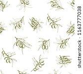 seamless pattern olives  hand... | Shutterstock .eps vector #1163777038