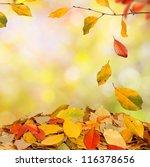 autumn background | Shutterstock . vector #116378656
