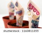 nigerian money. five hundred...   Shutterstock . vector #1163811355