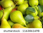 fresh ripe pears with leaves as ... | Shutterstock . vector #1163861698