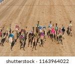 camel racing in track | Shutterstock . vector #1163964022
