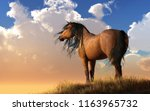 a horse with a light brown ... | Shutterstock . vector #1163965732