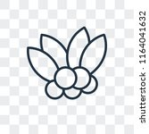 mistletoe vector icon isolated...   Shutterstock .eps vector #1164041632
